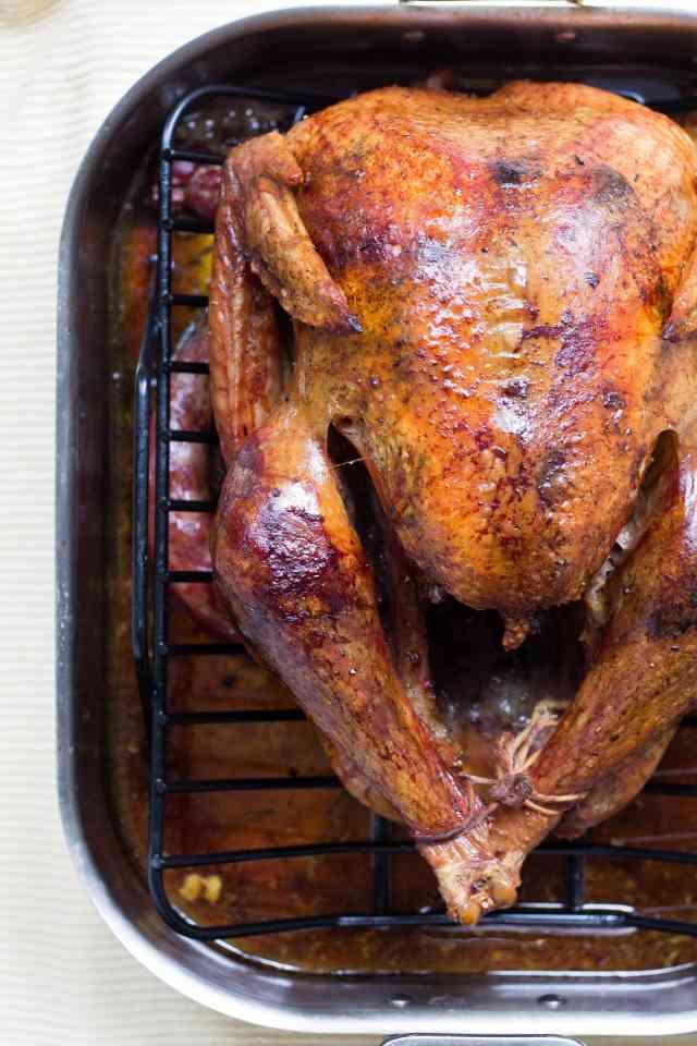 roasted turkey by alison marras